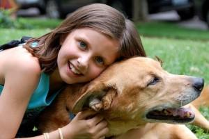 salud perro mascota saludable barchilon